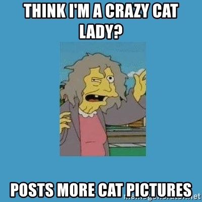 crazy cat lady simpsons - Think I'm a crazy caT lady? Posts more caT pictureS