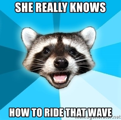 Lame Pun Coon - she really knows how to ride that wave