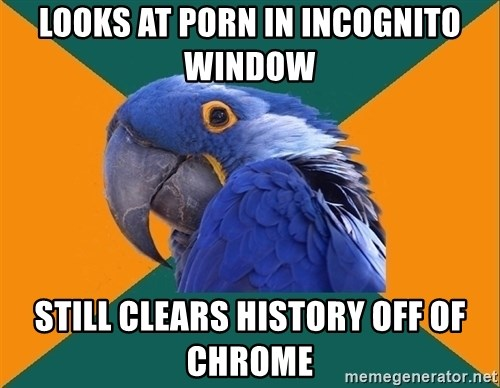 Paranoid Parrot - Looks at porn in incognito window still clears history off of chrome
