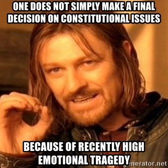 One Does Not Simply - one does not simply make a final decision on constitutional issues because of recently high emotional tragedy