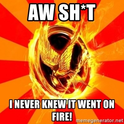 Typical fan of the hunger games - AW SH*T I NEVER KNEW IT WENT ON FIRE!