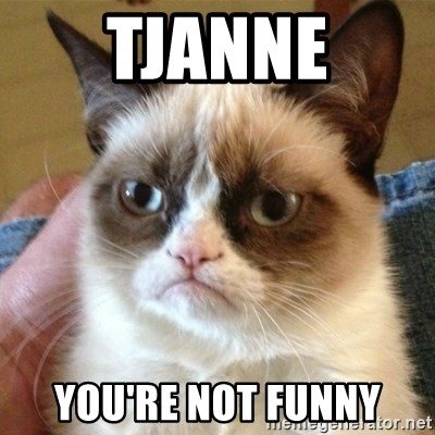 not funny cat - Tjanne You're not funny