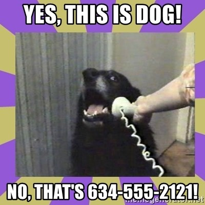Yes, this is dog! - YES, THIS IS DOG! NO, THAT'S 634-555-2121!