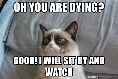 Grumpy cat good - oh you are dying? good! i will sit by and watch