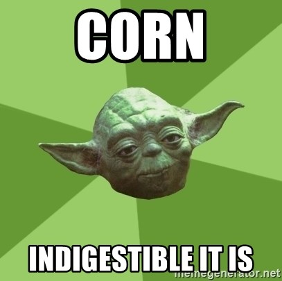 Advice Yoda Gives - corn indigestible it is