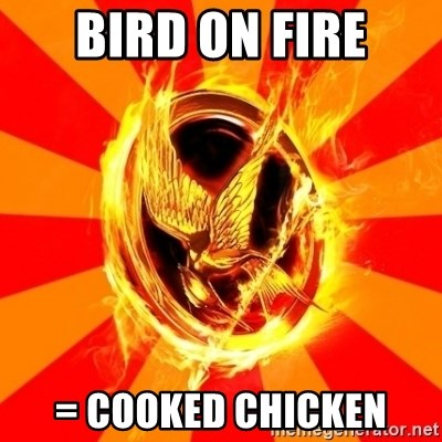Typical fan of the hunger games - bird on fire = cooked chicken