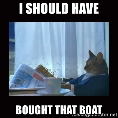 i should buy a boat cat - I should have bought that boat