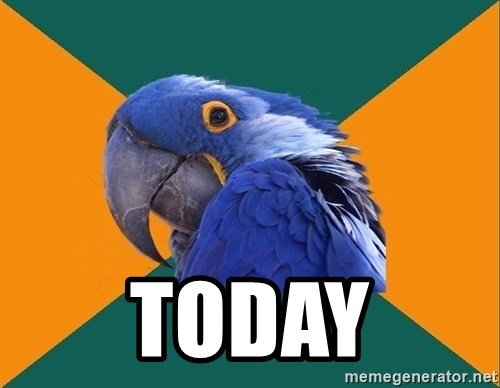 Paranoid Parrot - TODAY