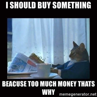i should buy a boat cat - i should buy something beacuse too much money thats why