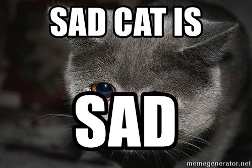 Sadcat - SAD CAT IS SAD
