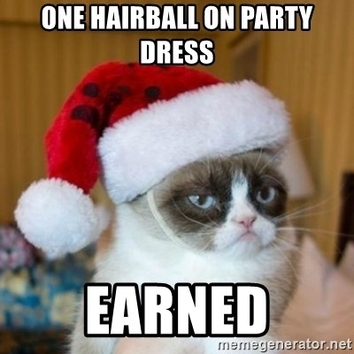 Grumpy Cat Santa Hat - one hairball on party dress earned