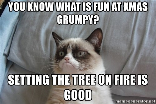 Grumpy cat good - you know what is fun at Xmas Grumpy? setting the tree on fire is good