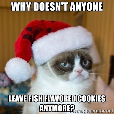 Grumpy Cat Santa Hat - Why doesn't anyone  leave fish flavored cookies anymore?