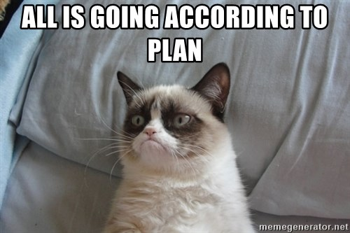 Grumpy cat good - ALL IS GOING ACCORDING TO PLAN