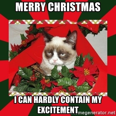 GRUMPY CAT ON CHRISTMAS - Merry Christmas i can hardly contain my excitement