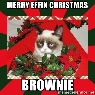 GRUMPY CAT ON CHRISTMAS - merry effin christmas brownie