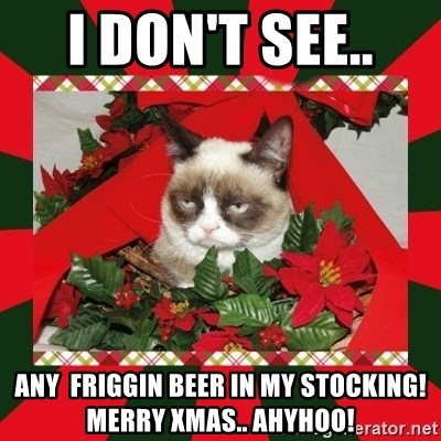 GRUMPY CAT ON CHRISTMAS - I don't See..  Any  Friggin Beer in my Stocking! Merry Xmas.. Ahyhoo!
