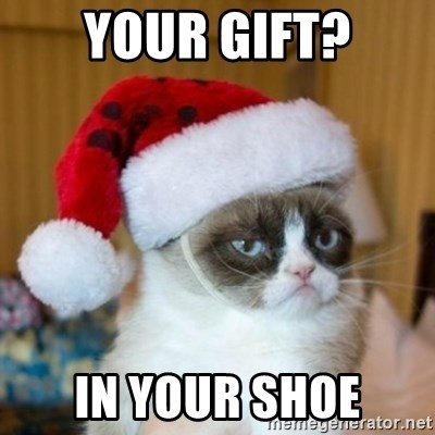 Grumpy Cat Santa Hat - your gift? in your shoe
