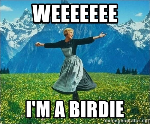 Look at all the things - WEEEEEEE I'M A BIRDIE