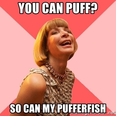 Amused Anna Wintour - You can puff? So can my pufferfish