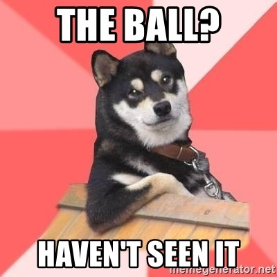 Cool Dog - the ball? haven't seen it