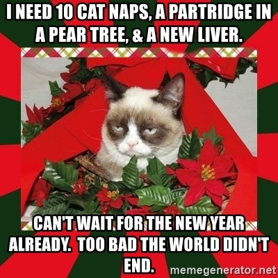 GRUMPY CAT ON CHRISTMAS - I need 10 Cat Naps, a Partridge in a Pear Tree, & A New Liver. Can't wait for the New Year already.  Too bad the world didn't end.