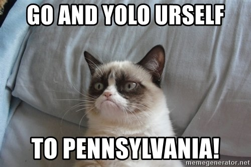 Grumpy cat good - GO AND YOLO URSELF TO PENNSYLVANIA!