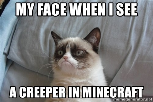 Grumpy cat good - MY FACE WHEN I SEE A CREEPER IN MINECRAFT