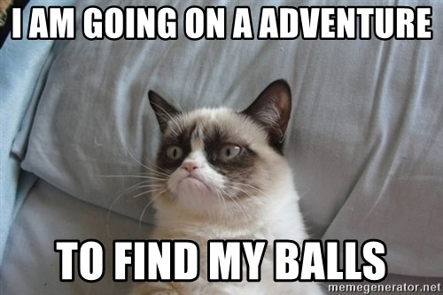 Grumpy cat good - I AM GOING ON A ADVENTURE TO FIND MY BALLS