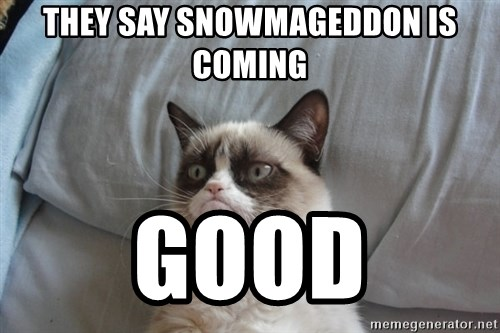 Grumpy cat good - they say Snowmageddon is coming good