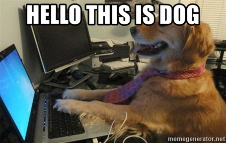 I have no idea what I'm doing - Dog with Tie - hello this is dog