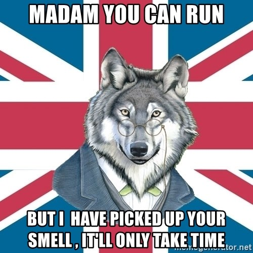 Sir Courage Wolf Esquire - Madam you can run But i  have picked up your smell , it'll only take time