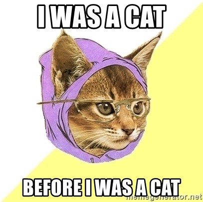 Hipster Kitty - I was a cat before i was a cat
