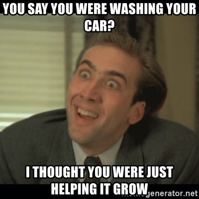 Nick Cage - You say you were waShing your car? I thought you were just Helping it grow