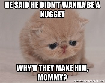 Super Sad Cat - he said he didn't wanna be a nugget why'd they make him, mommy?