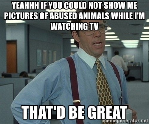 Office Space That Would Be Great - Yeahhh if you could not show me pictures of abused animals while I'm watching Tv that'd be great