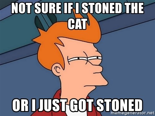 Futurama Fry - not sure if i stoned the cat or i just got stoned