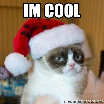 Grumpy Cat Santa Hat - IM COOL
