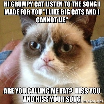 """Grumpy Cat  - hi grumpy cat listen to the song i made for you """"i like big cats and i cannot lie"""" ARE YOU CALLING ME FAT?  HISS YOU AND HISS YOUR SONg"""