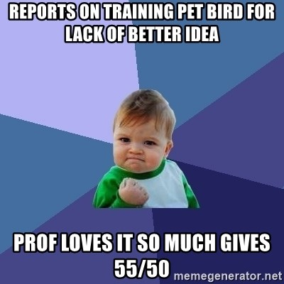 Success Kid - reports on Training Pet bird for lack of better idea prof loves it so much gives 55/50