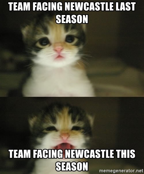 Adorable Kitten - Team facing Newcastle last season Team facing newcastle this season