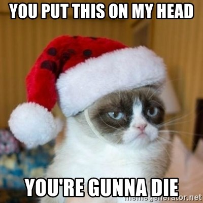 Grumpy Cat Santa Hat - YOU PUT THIS ON MY HEAD YOU'RE GUNNA DIE