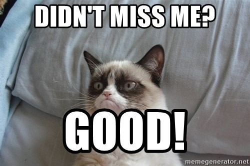 Grumpy cat good - Didn't miss me? Good!