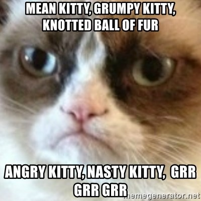 angry cat asshole - Mean Kitty, grumpy kitty, knotted ball of fur Angry kitty, nasty kitty,  grr grr grr