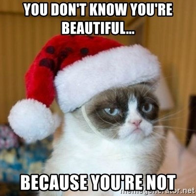 Grumpy Cat Santa Hat - YOU DON'T KNOW YOU'RE BEAUTIFUL... BECAUSE YOU'RE NOT