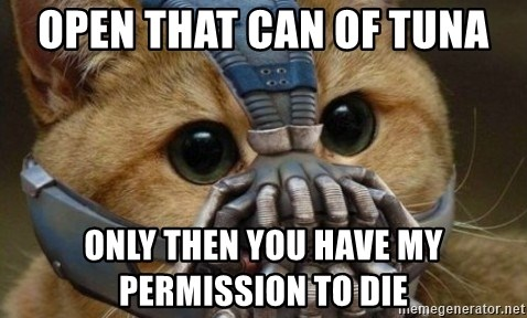 bane cat - open that can of tuna only then you have my permission to die