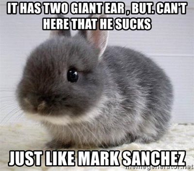 ADHD Bunny - IT HAS TWO GIANT EAR , BUT. CAN'T HERE THAT HE SUCKS JUST LIKE MARK SANCHEZ