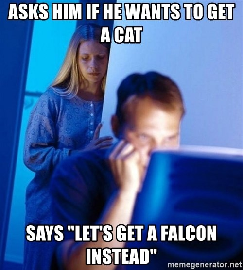"""Redditors Wife - ASKS HIM IF HE WANTS TO GET A CAT SAYS """"LET'S GET A FALCON INSTEAD"""""""