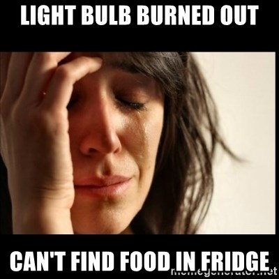 First World Problems - light bulb burned out can't find food in fridge