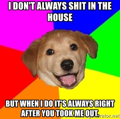 Advice Dog - I don't Always shit in the house but when I do it's always right after you took me out.
